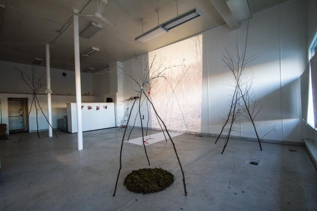 Joanna Smythe. Installation view. Photo courtesy of the artist.